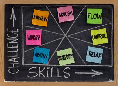 Sports Coaching Brain Coach's Peak Performance Profile